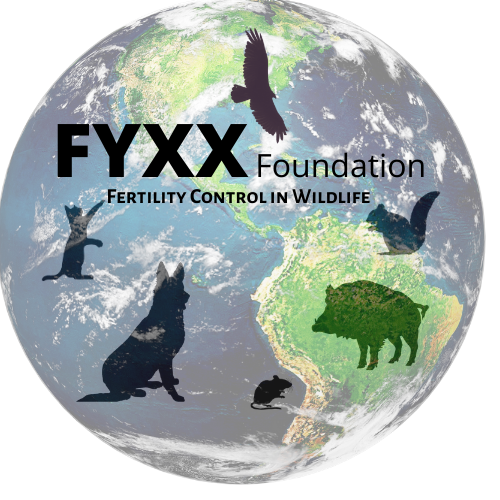 FYXX Foundation